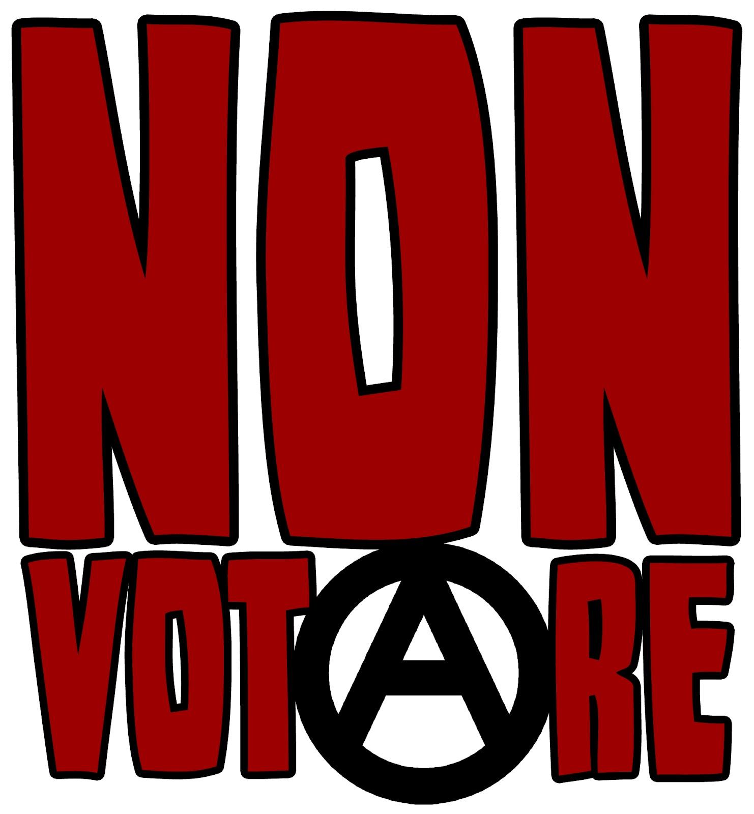 non votare2
